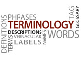 Role of terminology